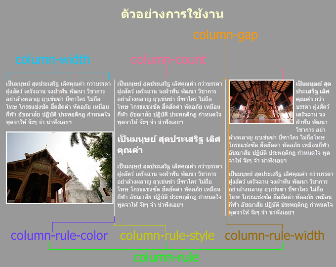 ภาพตัวอย่างการใช้งาน Property ต่างๆ ในการจัดหน้า แบบคอลัมน์