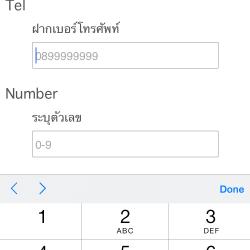 input type tel